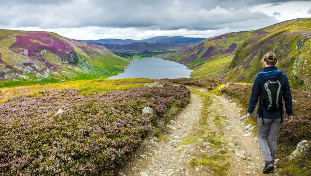 Walk in the Cairngorms National Park